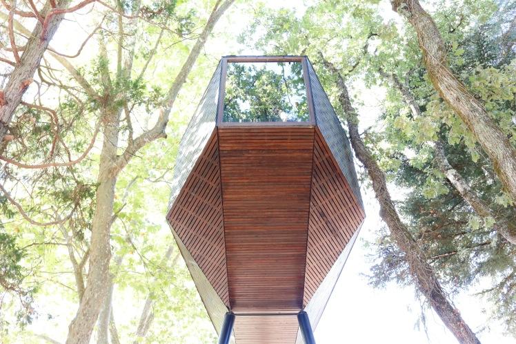 Pedras Salgadas Treehouse Portugal